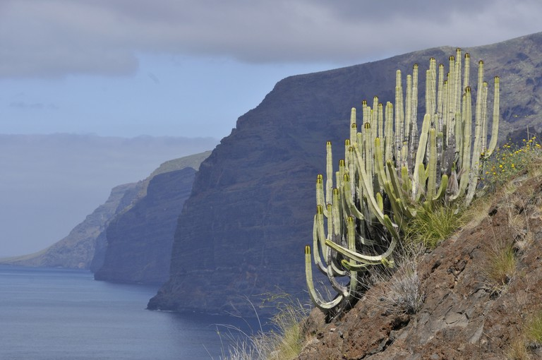 The Spanish island of Tenerife has invested a lot of money and hard work into converting its rocky coastline into a sunny heaven
