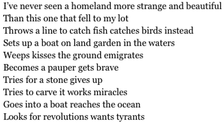 """from """"Beautiful and Strange Homeland"""""""