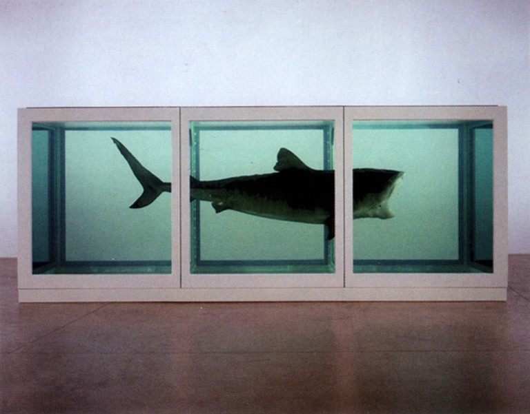 Damien Hirst, The Physical Impossibility of Death in the Mind of Someone Living (1991)