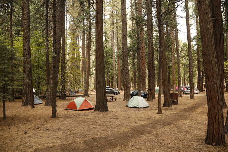 Tent camping in Yosemite National Park