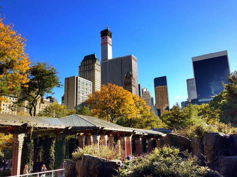Central Park Zoo View | © Mrs. Gemstone/Flickr
