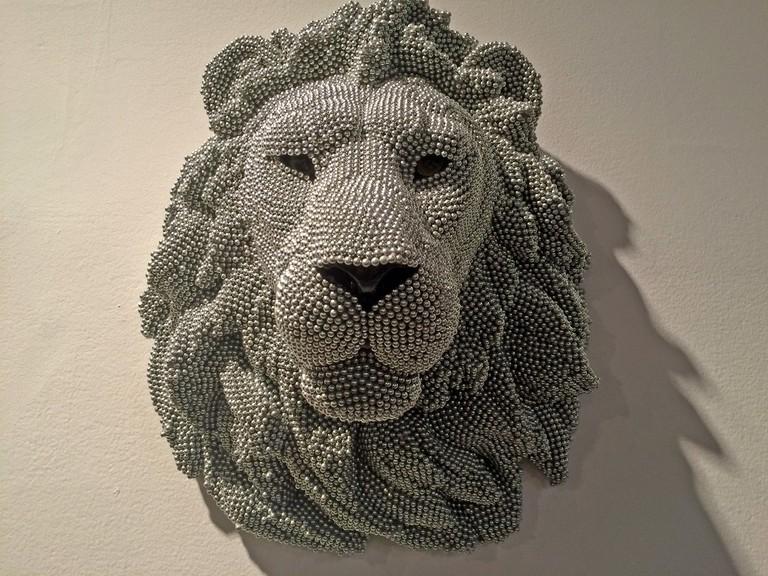 Photo of Lion | © Benita Gingerella