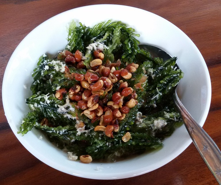 Seaweed Salad [ ©Okkisafire/Wikimedia]