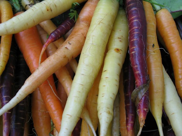 Carrots of Many Colors © Mason Masteka/Flickr