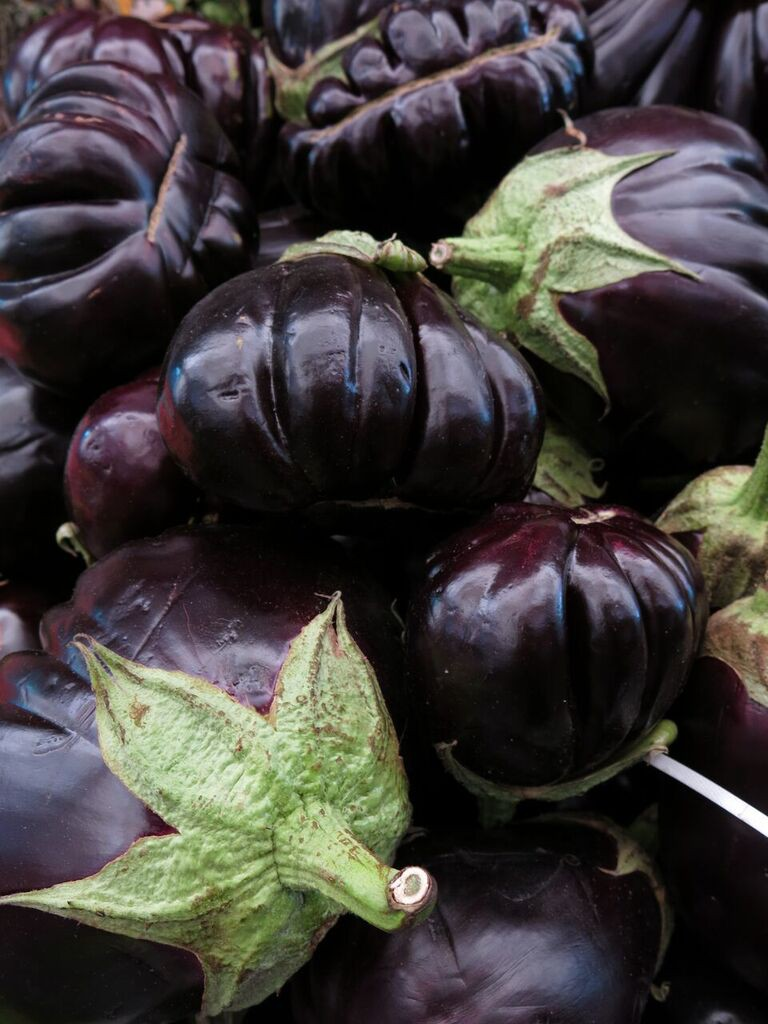 Eggplants in Machene Yehuda Shuk Courtesy of Laini Shaw