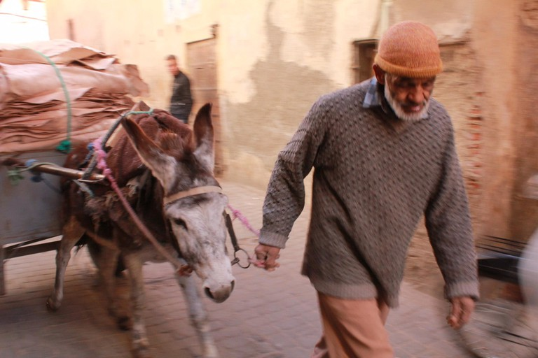 In the Medina, Marrakech | Courtesy of Shawna Burhans
