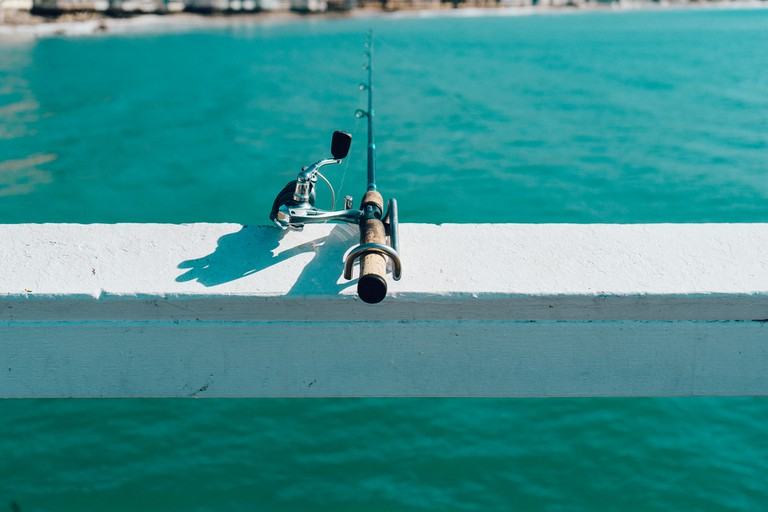 Fishing © jaymantri.com/Pexels