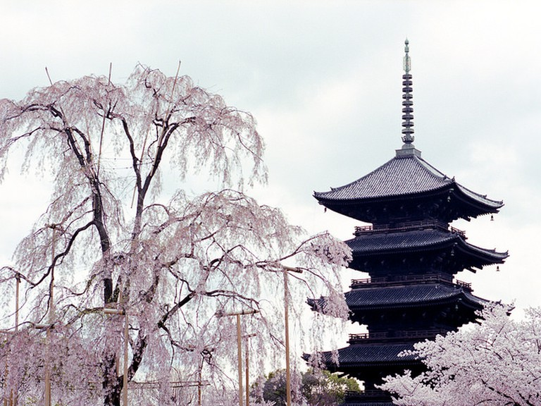 Toji Shrine © peter-rabbit|Flickr