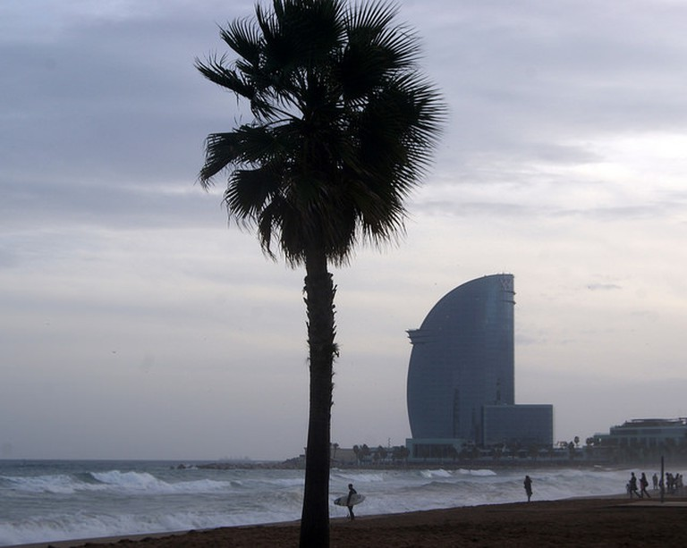 Palmera, surfistes i Hotel W a la Barceloneta (Barcelona)|©Teresa Grau Ros /Flickr