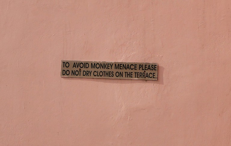 A sign warns guests of monkeys in a Haridwar budget hotel