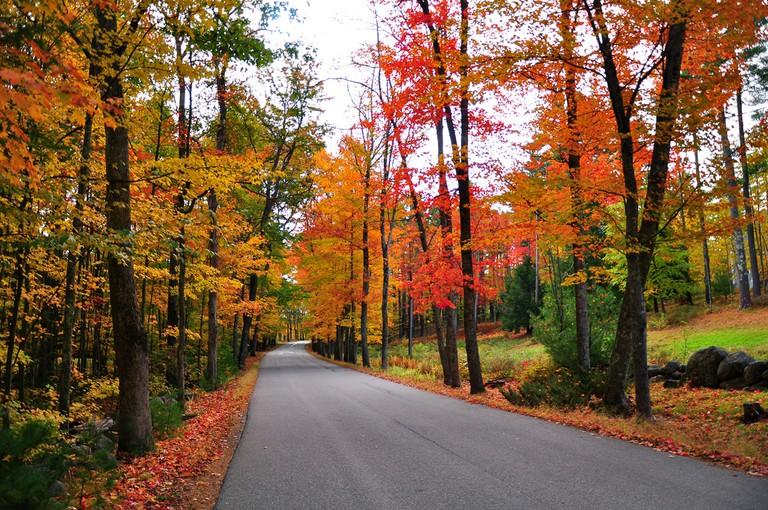 Fall foliage in Dover | © kimberlykv/Flickr