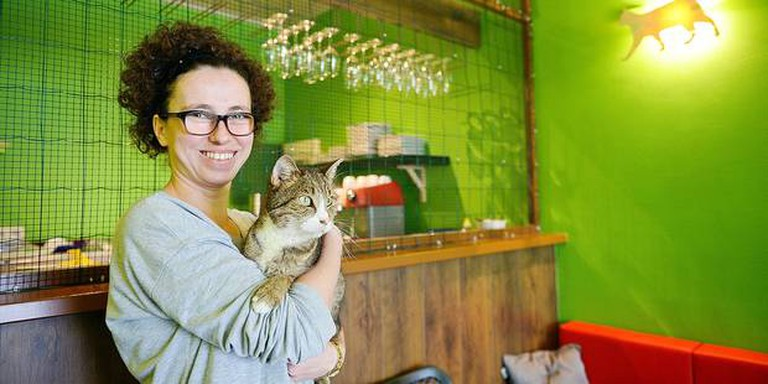 The first cat cafe in Brussels (In courtesy of Le Chat Touille)