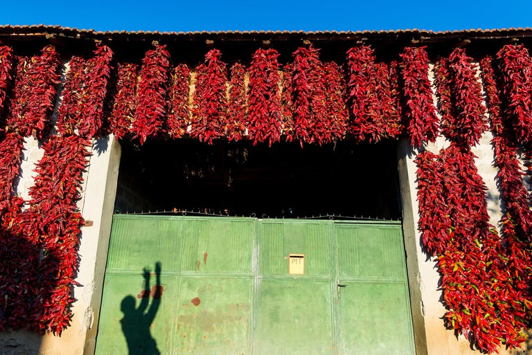Every autumn, Donja Lokošnica becomes red pepper central