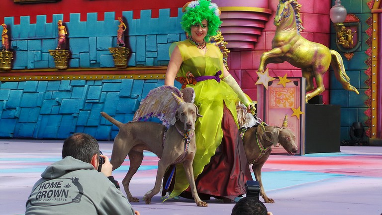 5ª Edición Carnaval Canino 2014 Las Palmas de Gran Canaria | © El Coleccionista de Instantes / Flickr