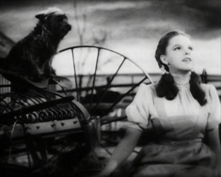 Toto and Dorothy from 'The Wizard of Oz' | © Photo in the public domain