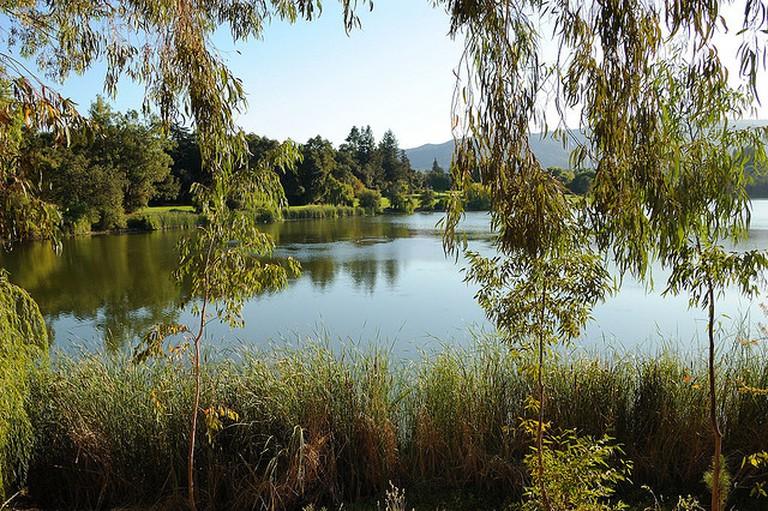Vasona Lake County Park © Don DeBold/Flickr