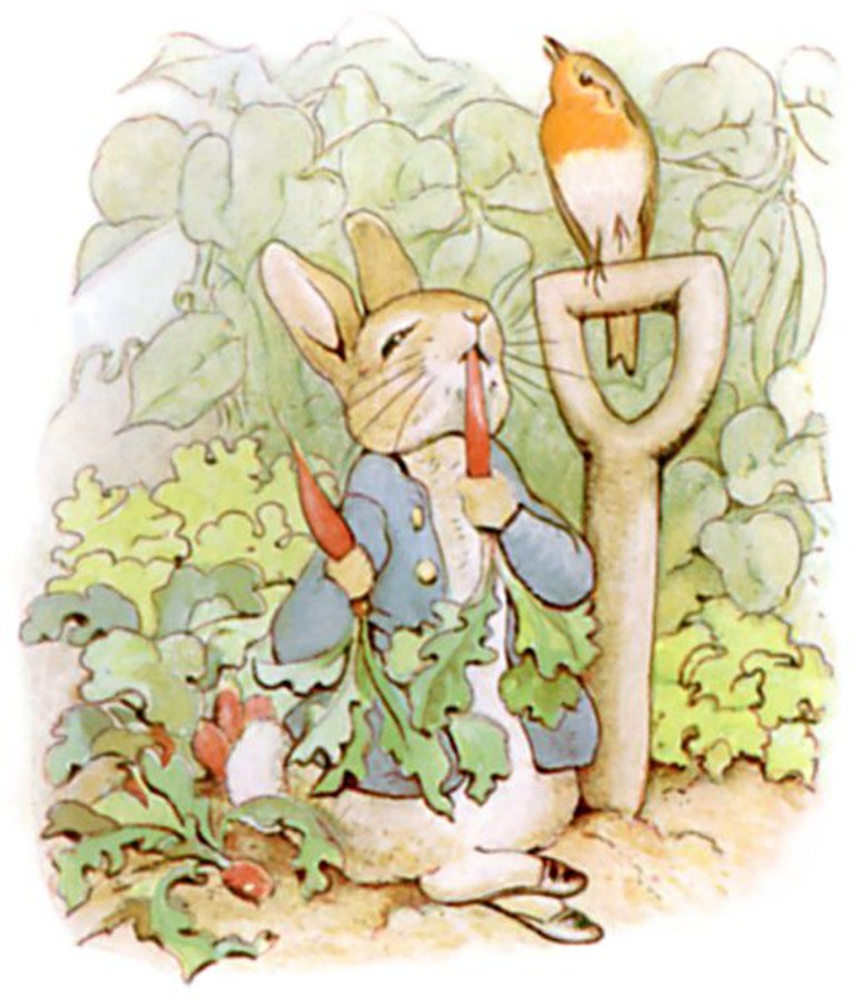 The Tale of Peter Rabbit illustrated by Beatrix Potter | © Innotata / Wikicommons