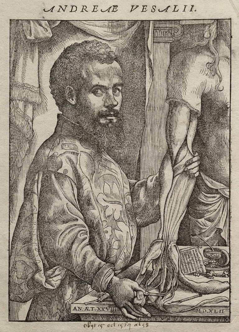 Portrait of Vesalius from his De humani corporis fabrica|© Wiki Commons