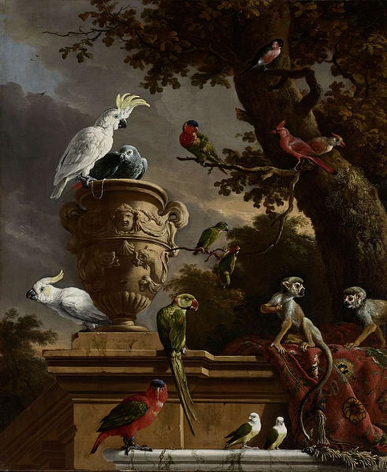 Melchior'd Hondecoeter. De menagerie. C.1690 |©Crisco 1492 / WikiCommons