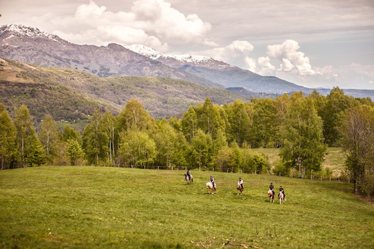 Horseback riding in the open nature