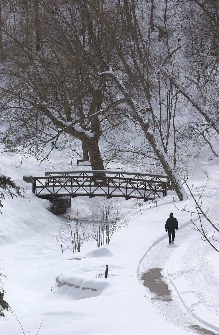 Winter in Toronto's parks | © City of Toronto / Flickr