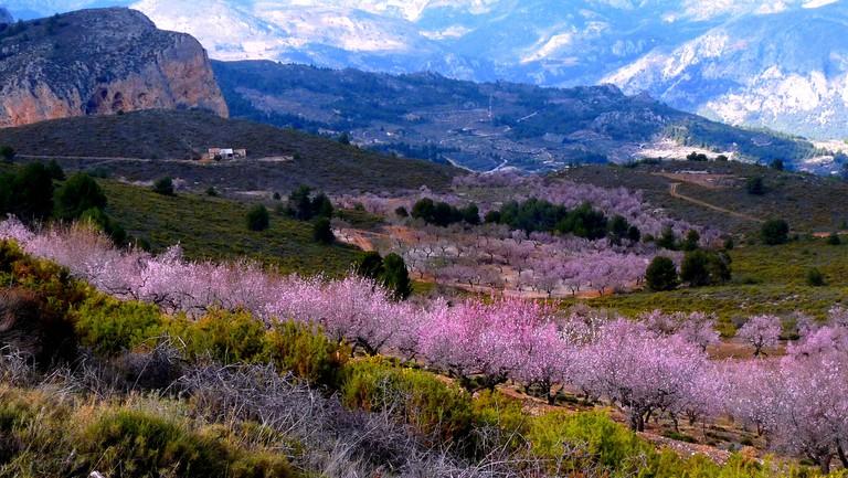 Sierra de Aitana   Les Haines / © Flickr