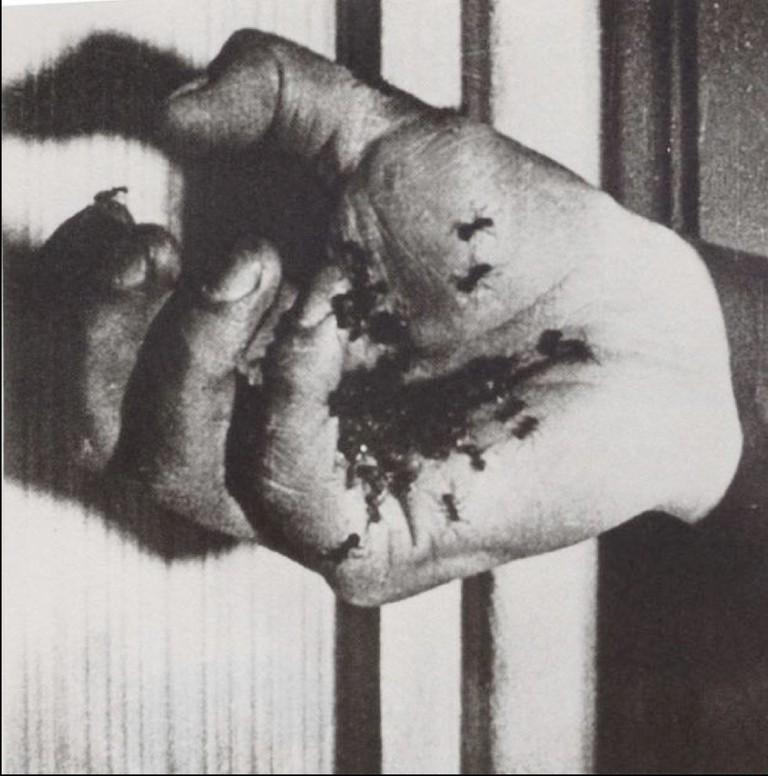 Un Chien Andalou | © Luis Buñuel