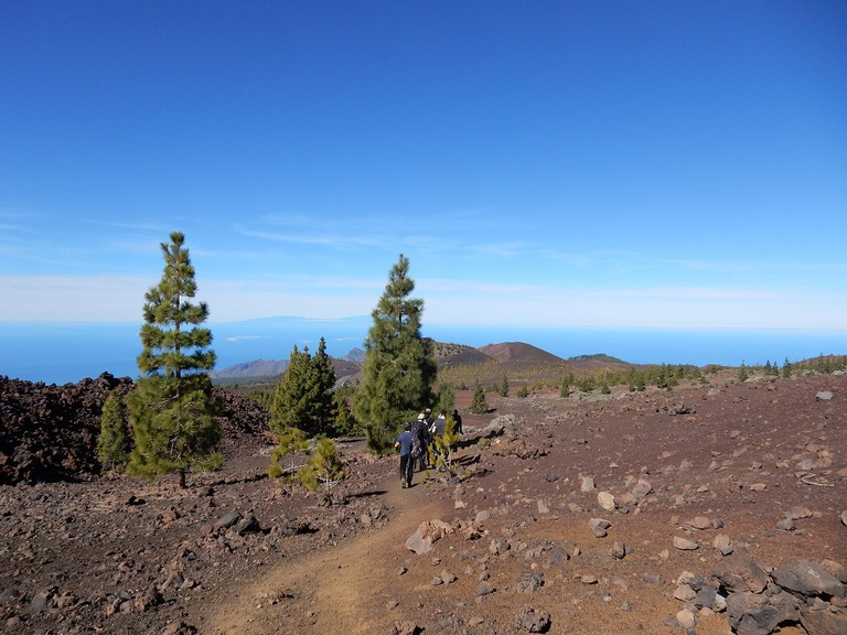 Walking in the national park, Tenerife