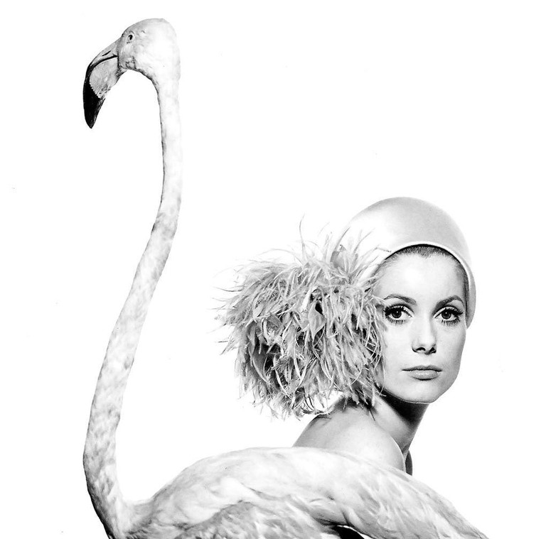 Catherine Deneuve photographed by David Bailey for Vogue, 1968 | Courtesy of The Coincidental Dandy/Flickr