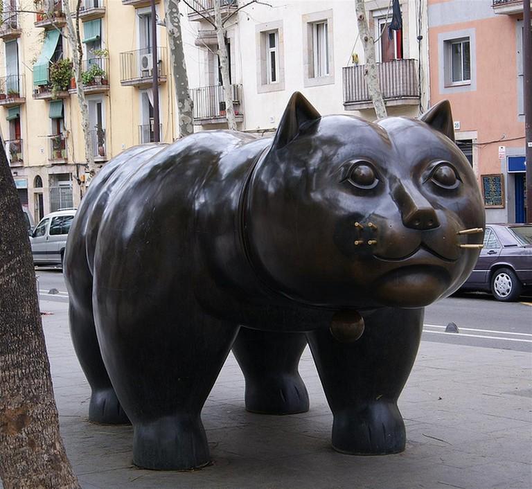Fat cat|© Marek Lipczak/Flickr