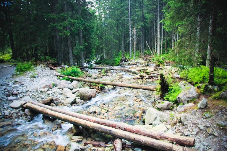 Take a hike in the Tatras