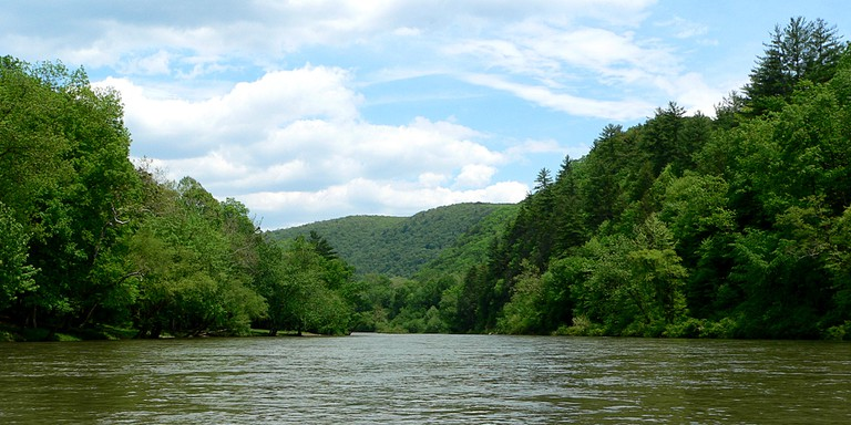 View along the Greenbrier River Trail,