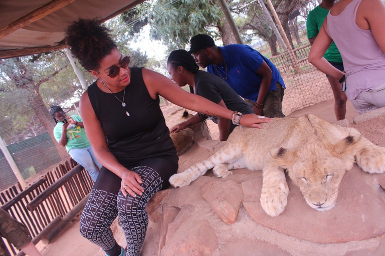 Lion Park in Johannesburg, South Africa