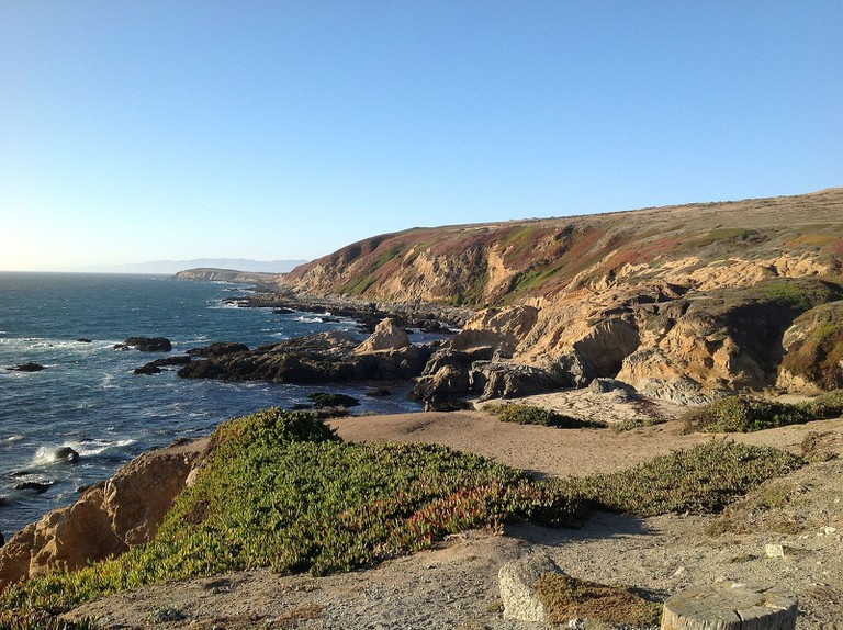 View from Bodega Head