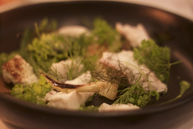 Local seafood, foraged mushrooms and greens at The Long Apron