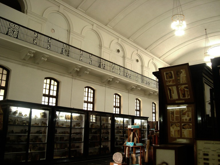 Museum Halls, FRI| © Shashank Sawant