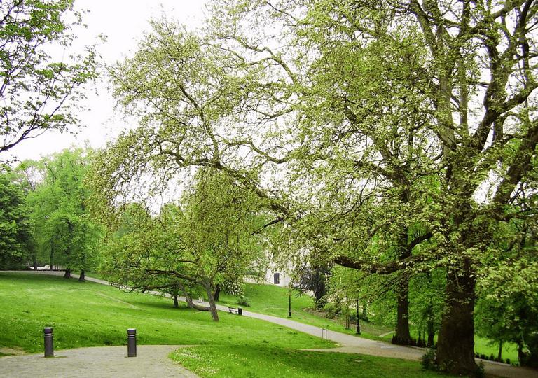 Parc Léopold-Bruxelles | WikiCommons