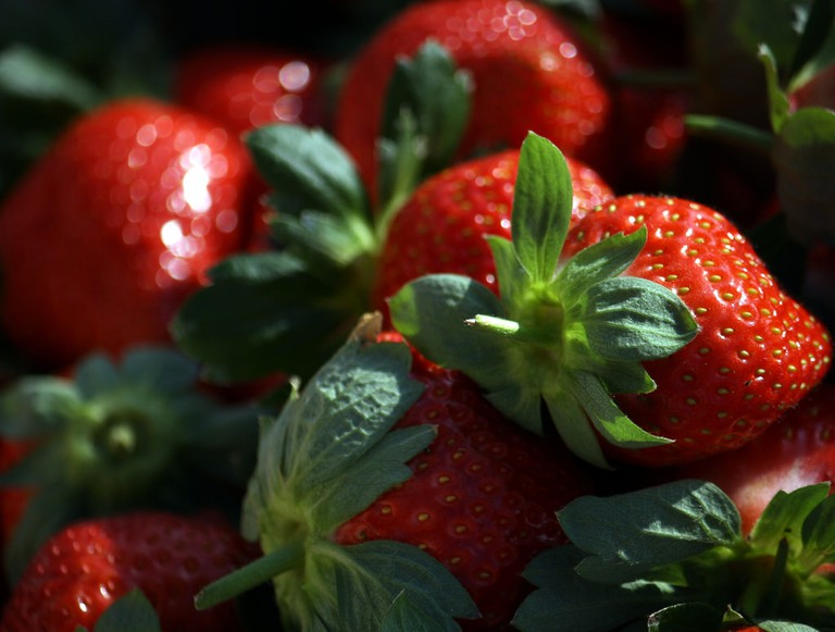 Mahabaleshwar strawberries | © Chirag_jog / Flickr