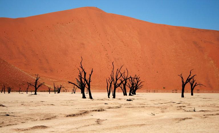 Namib Desert   © Santiago Medem/Flickr