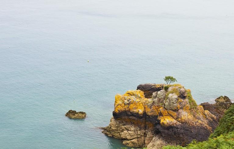 Jersey   © Ralf / Flickr
