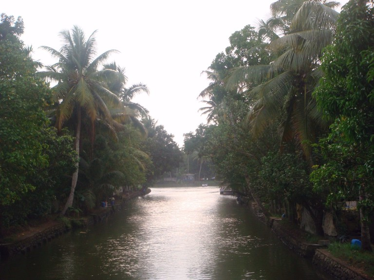 View of Backwaters