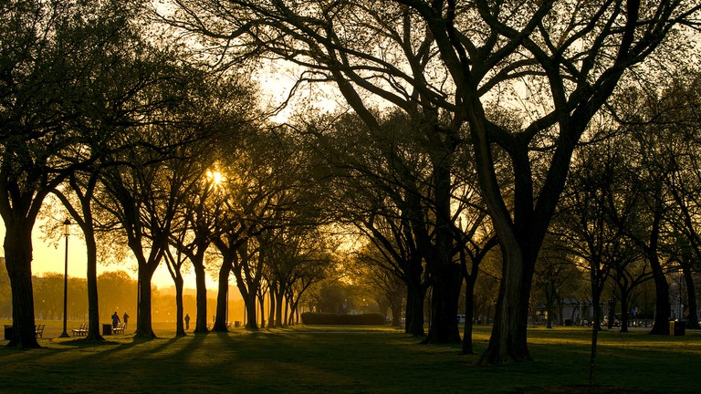 Washington, D.C. | © Fotocitizen/Pixabay