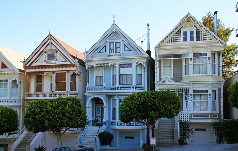 Painted Ladies close up