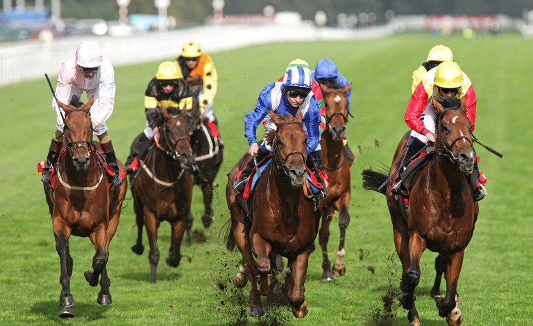 Horseracing has the history, audience and governing body required.