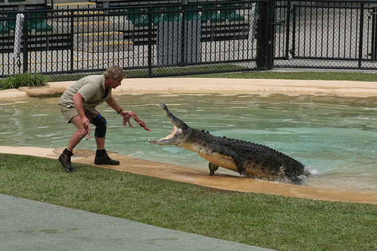 Steve at Crocoseum, Australia Zoo