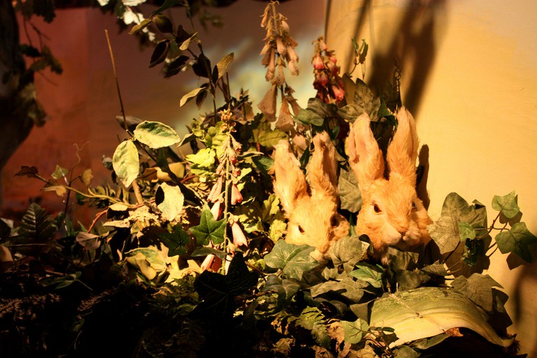 The Flopsy Bunnies at the Beatrix Potter museum in Bowness © Ann Lee/Flickr