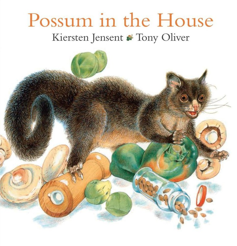 Possum in the House | © Gareth Stevens Pub
