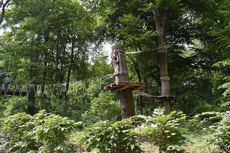 Waldhochseilgarten in Volkspark Jungfernheide | © Kvikk/WikiCommons