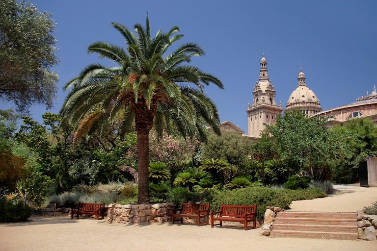 The Botanic Gardens   © Jorge Franganillo / Flickr