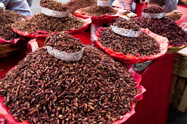 Chapulines | © William Neuheisel/Flickr